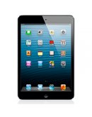 Apple iPad Mini 16Gb Black Wi-Fi